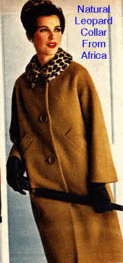 Woolen Ladies Coat with Natural Leopard Collar