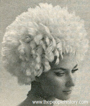 1966 Feather Wig Hat