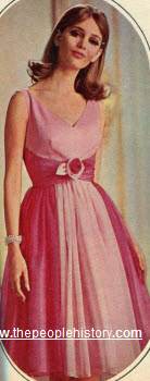 1965 Two Tone Chiffon Dress
